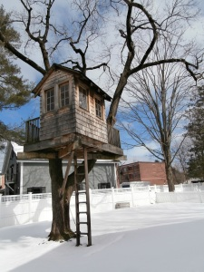 Concord Academy Treehouse