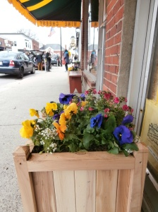 concordma-cheese-shop-flowers