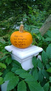 return-stolen-pumpkin