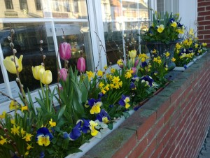 flower-box-april-12-14