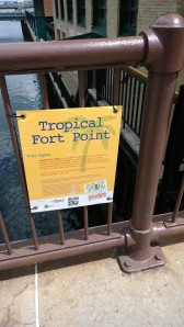 Agoos-Tropical-Fort-Point