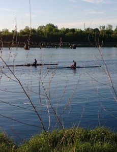 early-rowing-seekonk-river