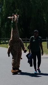 giraffe-costume