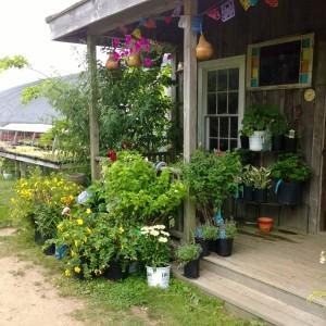 goose-and-garden-porch