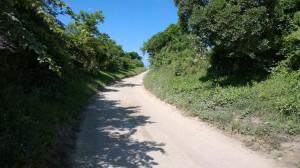 RI-summer-lane