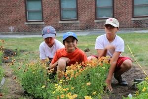 biodiversity-kids