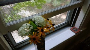 Window-and-summer-flowers
