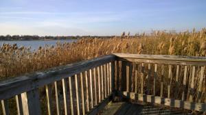audubon-boardwalk-Warren-RI