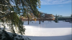 view-of-Seaport-Boston