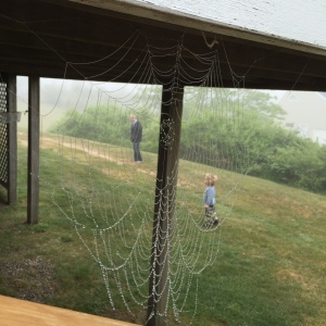 cobweb-view-of-Mormor-and-G