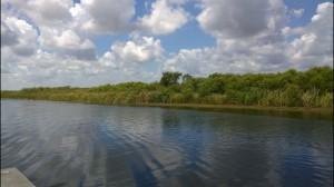 here-be-alligators