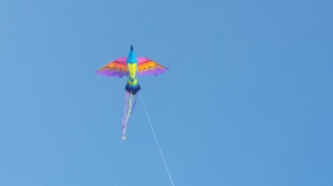 060715-kite-above-new-shoreham