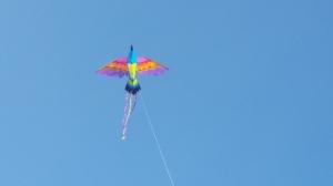 060715-kite-above-new-shoreham