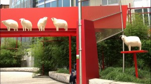 sheep-in-chinatown
