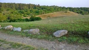 fields-New_Shoreham