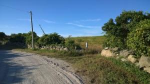 080815-dirt-road-RI