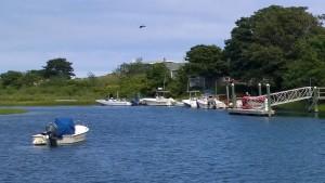 082315-sheltered-harbor