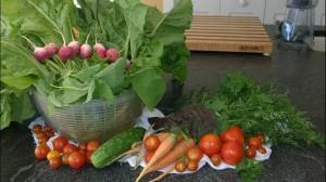 090515-Sandy-K-veggies