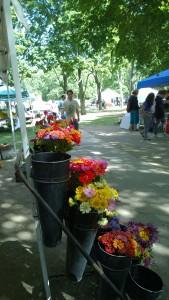 092615-RI-farmers-market