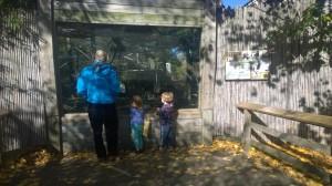 110815-John-at-zoo