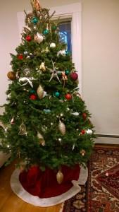 122515-tree-in-Arlington
