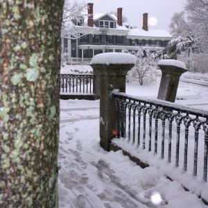 020516-6tag-lichen-and-snow