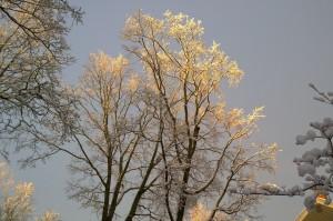 020516-sun-on-snow