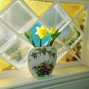 021416-daffodils