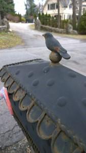 031816-bord-on-mailbox