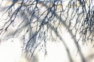 041016-shadows-on-sidewalk