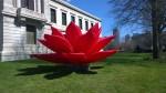 041416-Museum-Fine-Arts-lotus