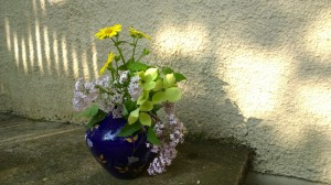 052016-lilacs-dogwood-shadows
