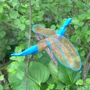 6tag-060316-dragonfly
