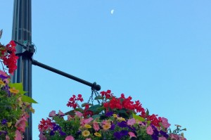 072616-moon-and-hanging-baskets