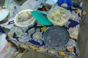 080316-beach-picnic