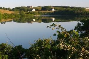 080416-Fresh-Pond-reflections