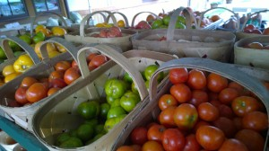 093016-tomatoes-at-farmstand-concord-ma