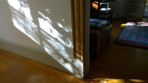 100716-light-and-shadow-at-home