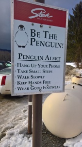 122716-stowe-penquin-safety-tips