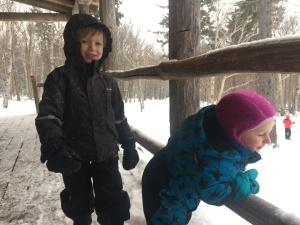 https://suzannesmomsblog.files.wordpress.com/2017/01/122816-grandkids-in-vermont.jpg