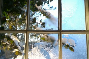 021017-frosty-window