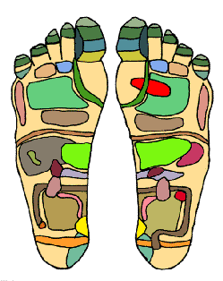 foot_chart1_small