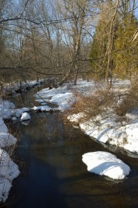 021817-snow-melting-at-stream