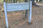 041217-Concord-forest-walk