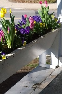 041417-Colonial-Inn-flower-boxes