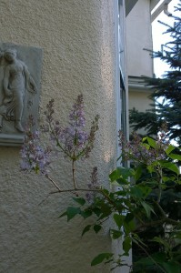 050317-lilac-and-lady-2