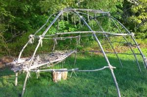051217-feathery-dogwood-and-garage