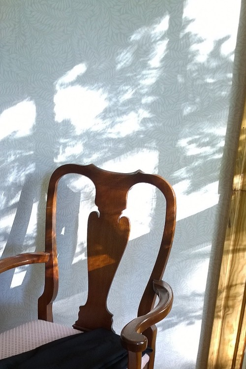 051117-can't-resist-sun-and-shadow