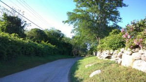 070917-dirt-road-New-Shoreham-RI