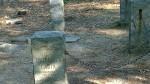072317-Thoreau-cabin-site